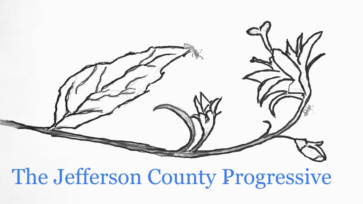 The Jefferson County Progressive